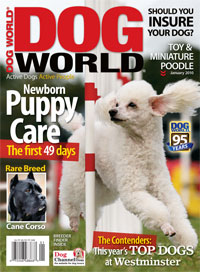 Image of Dog World's January issue