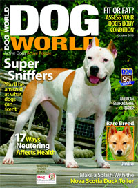 Image of Dog World Magazine's October 2010 issue