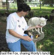 Photo of photographer Monty Sloan with Basil the fox